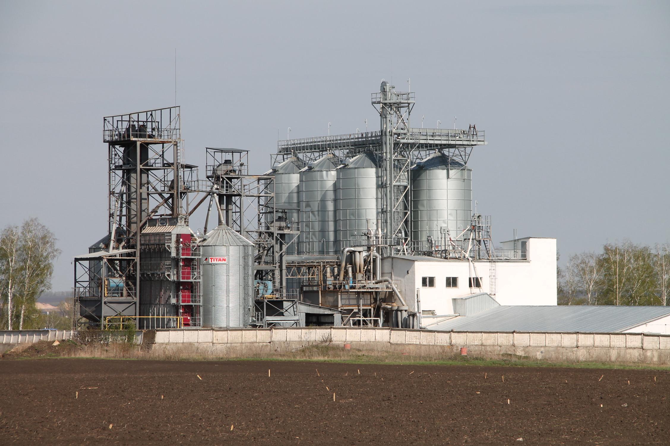 Фото семенного заводаоао приосколье-агро семена красная яруга 3